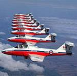The Snowbirds are here!